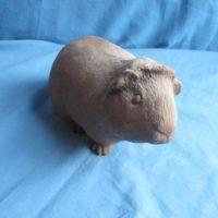 gare 3636 guinea pig (HD 17)  bisqueware
